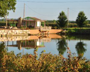 Tree & Shrub Farm in Lawrence, KS