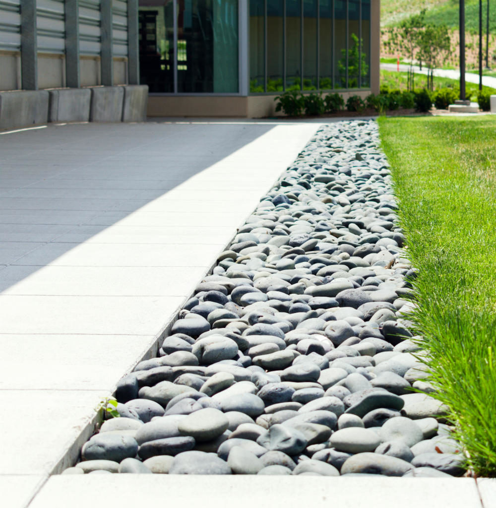 commercial landscaping for a walkway