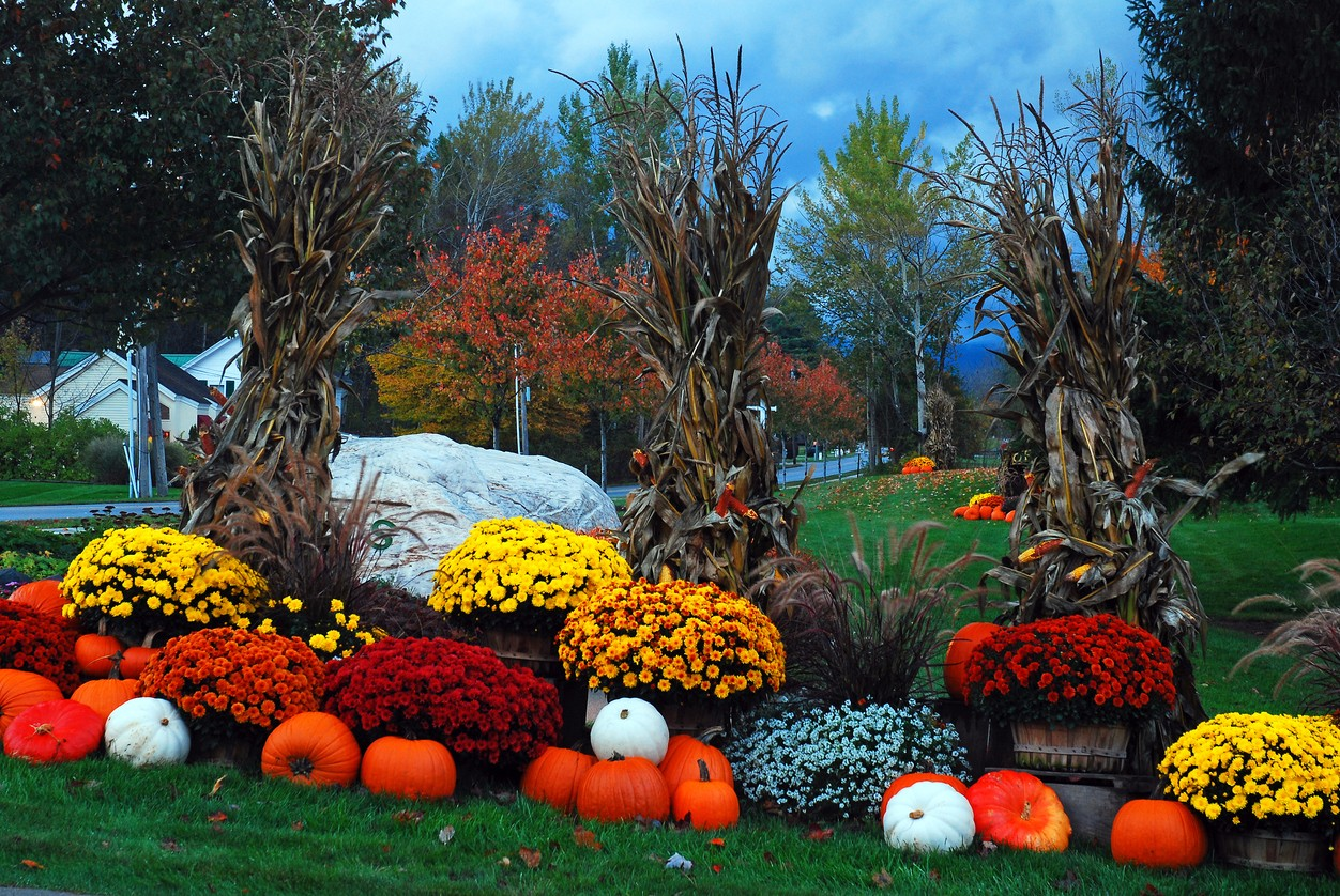 Fall Landscaping Ideas For 2019 Lawrence Landscape